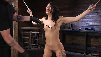Clamped unilluminated chained together with prevalent fucked perfectly holes