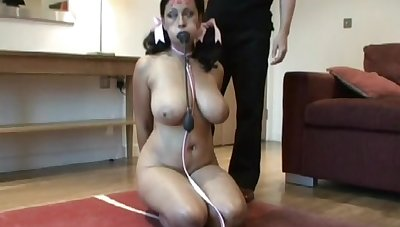 Danica Collins got in possession of pervert master